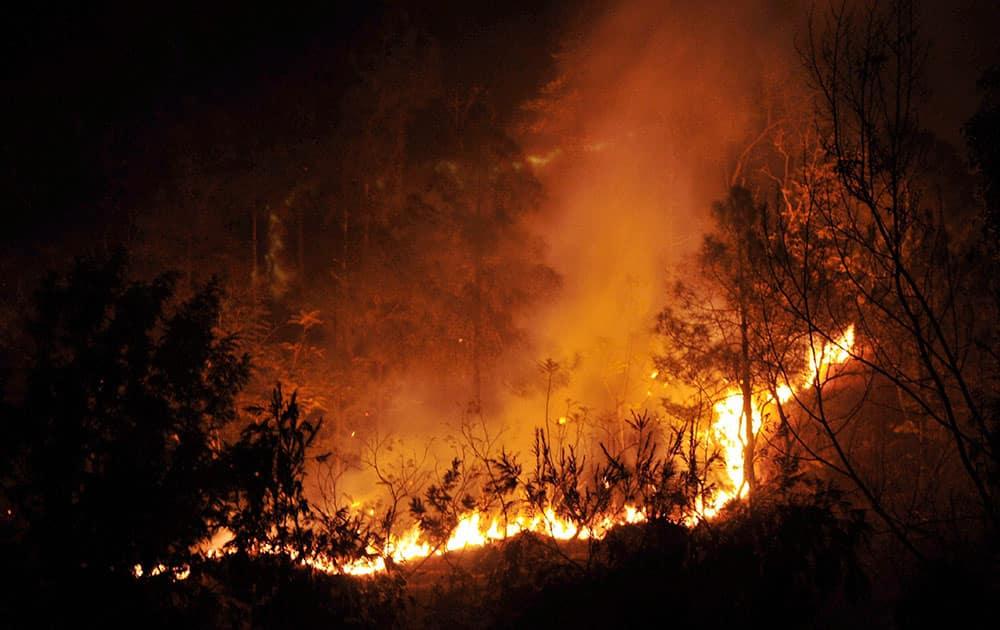 A wild fire broke out in a jungle near Kandaghat