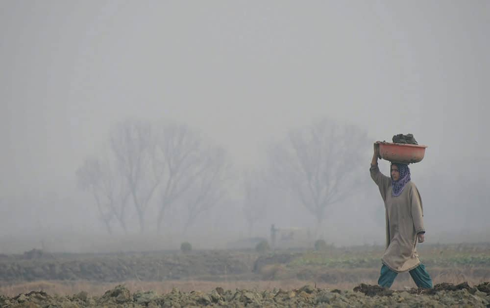 Fog in Srinagar