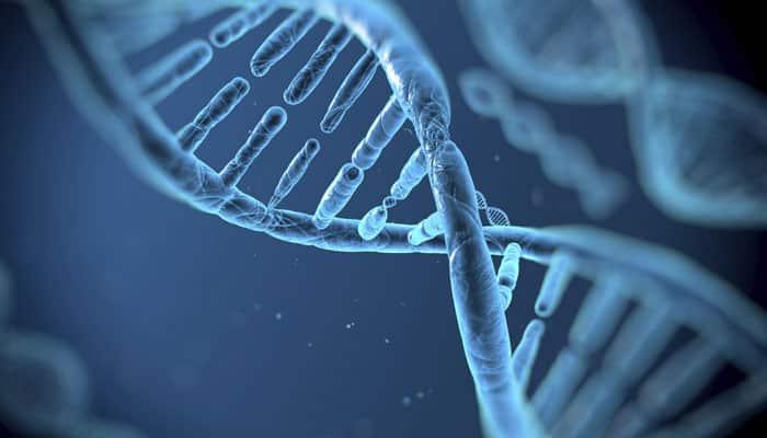 Novel method to fix genes in living organisms