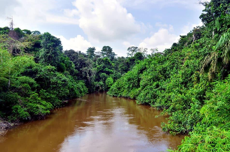 Congo (Chambeshi)