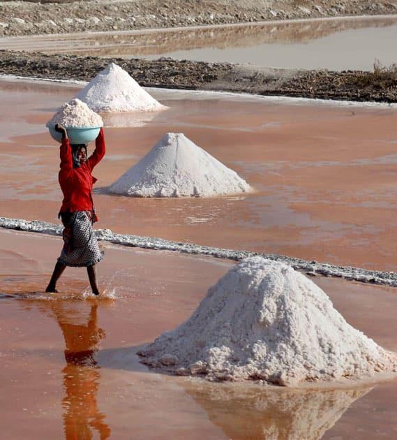 Labourer collects salt