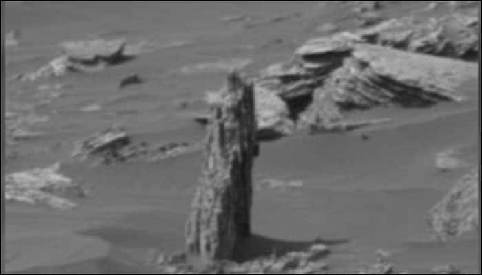 Alien hunters spot possible tree stump on Mars, say it points towards existence of vegetation on Red Planet!