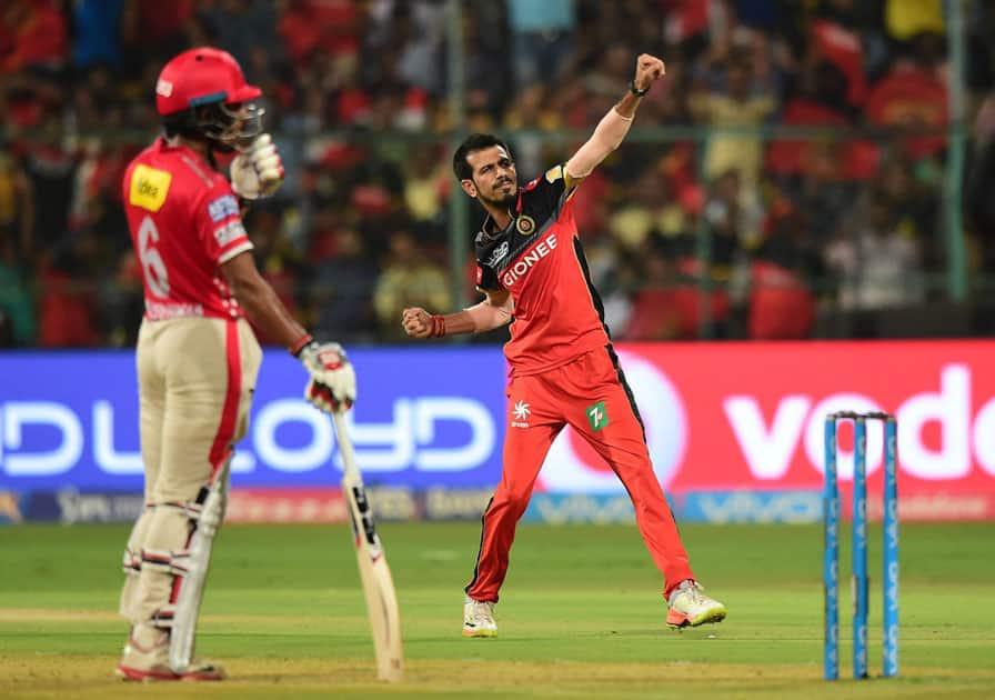 Bangalore Yuzvendra Chahals celebrate the wicket of Glen Maxwell