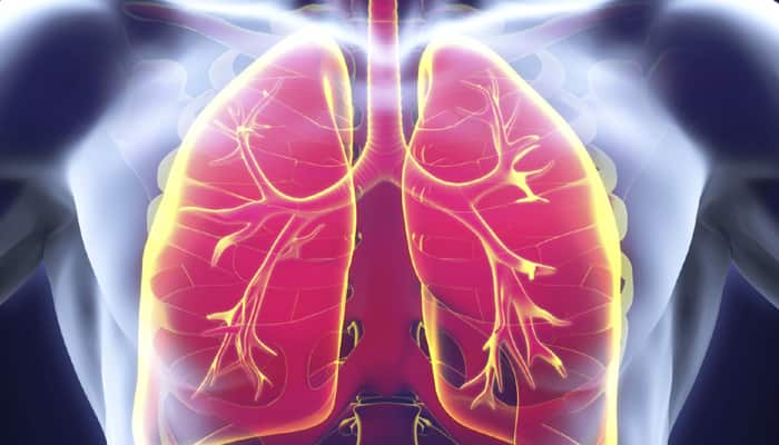 Patients suffering from tuberculosis may soon have new treatment