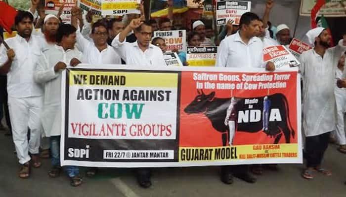 End cow vigilantism, take action against violence: Supreme Court tells Centre