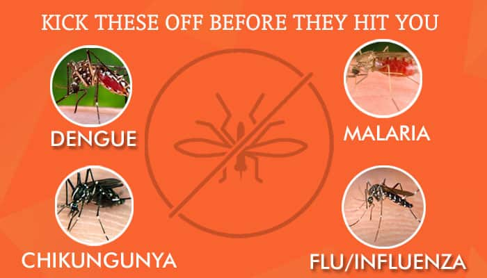 How to fight dengue, malaria, flu and chikungunya – Symptoms