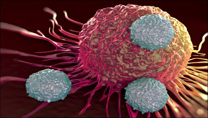 New compound can make cancer cells commit suicide