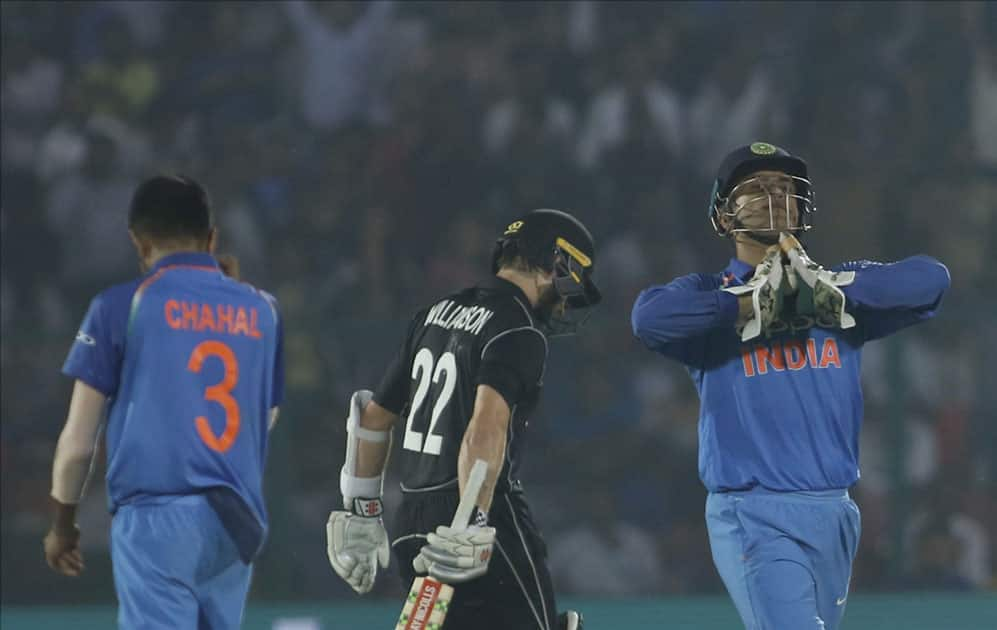 India's MS Dhoni celebrates fall of Kane Williamson's wicket during the third ODI match between India and New Zealand at Green Park Stadium in Kanpur.