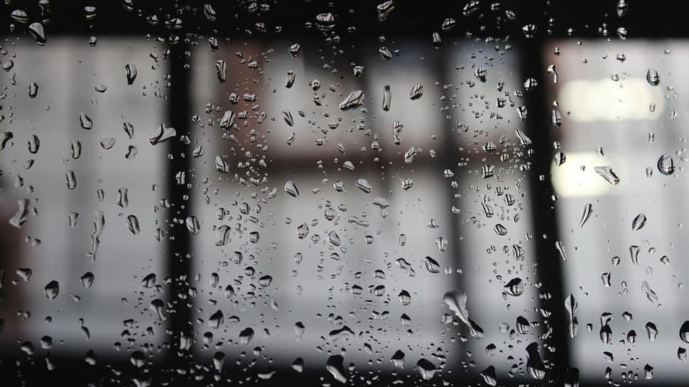 Cyclone Ockhi effect: Bhopal receives winter rain