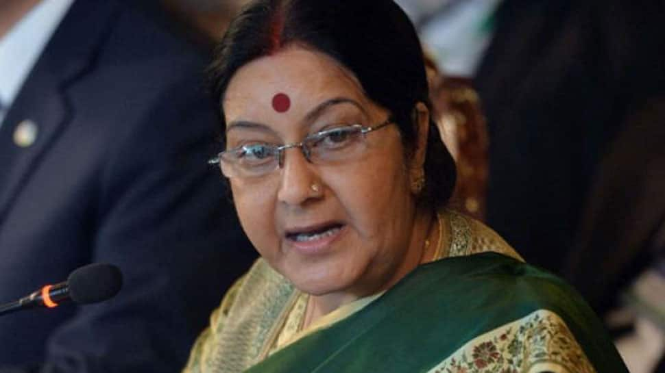 Government monitoring Brahmaputra to detect abnormalities: Sushma Swaraj