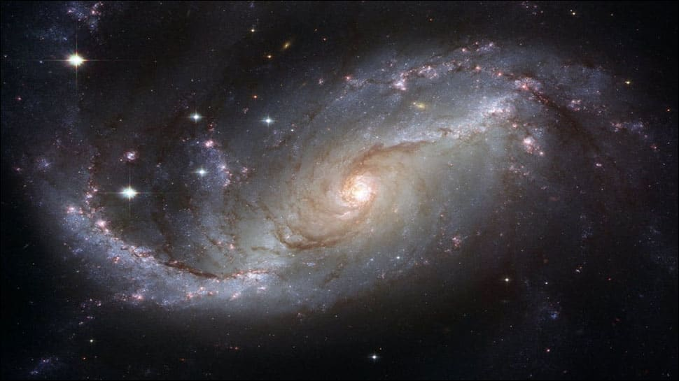 Massive stars are abundant in nearby galaxy than thought