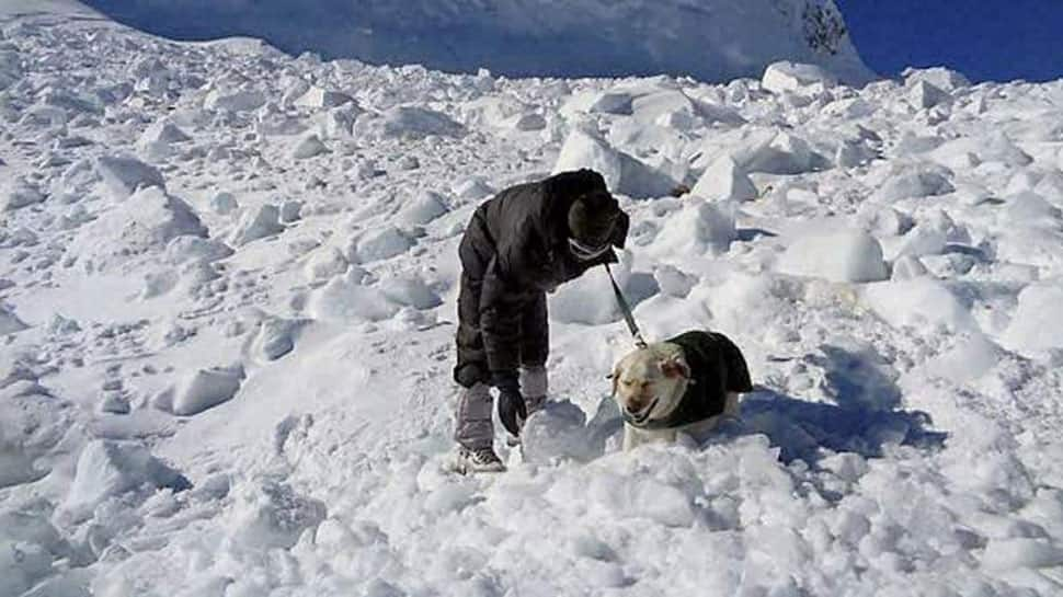 Kashmir: 5 bodies recovered from avalanche site in Kupwara; rescue operation on