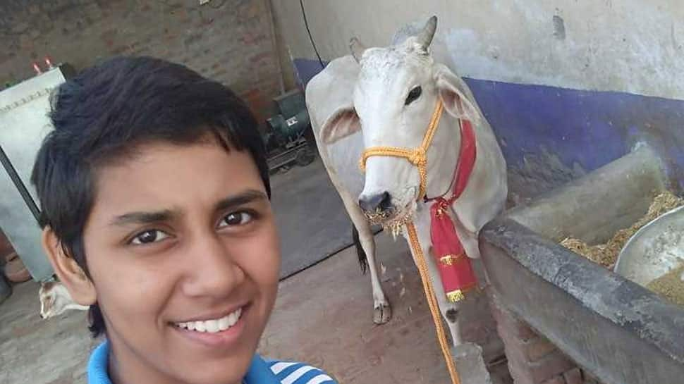 Haryana female boxers return cows given as awards by Manohar Lal Kharttar government