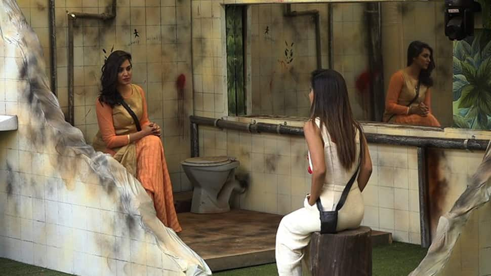 Bigg Boss 11, Day 100 written updates: Arshi Khan enters the house, inmates show their 'mean' side