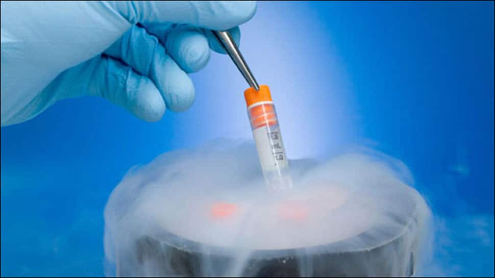 Success rate of frozen embryos as good as fresh ones in IVF pregnancies