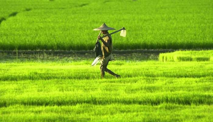 Budget 2018: Allocation for agri-research likely to go up 15%