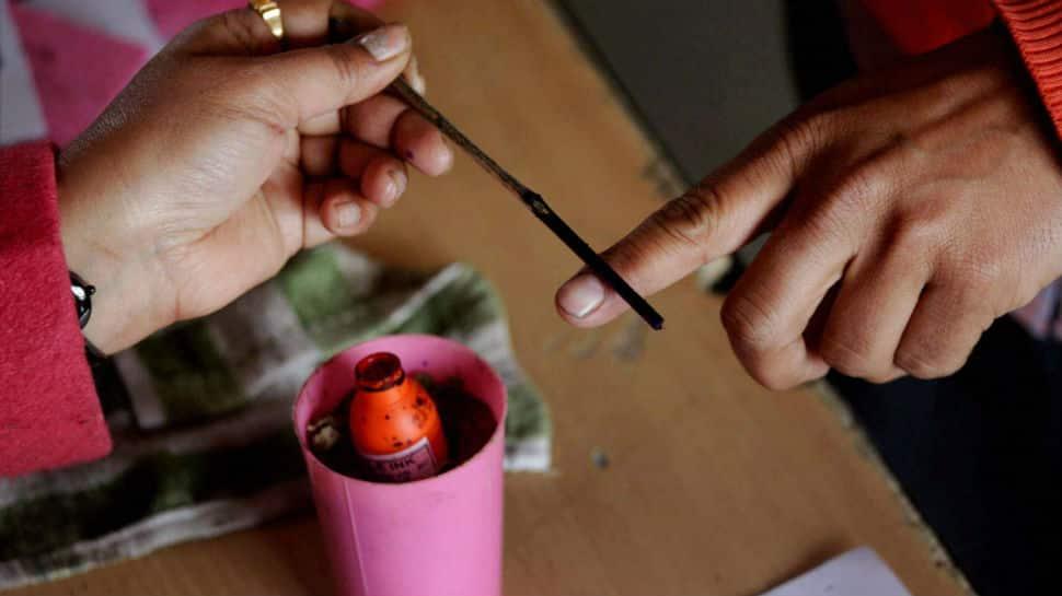 West Bengal bypolls: 76% votes cast in Uluberia, 75% in Noapara