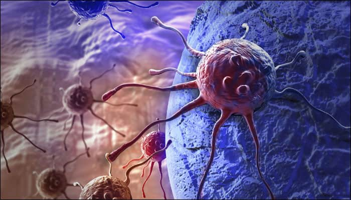 Cancer-fighting nanorobots can seek, destroy tumours