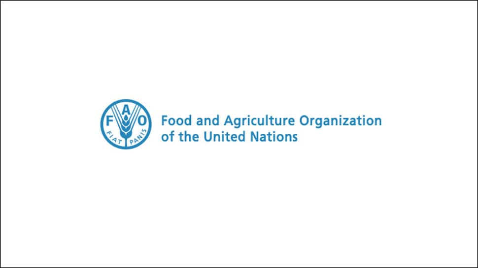 Italy's energy giant, FAO ink Nigeria water accord