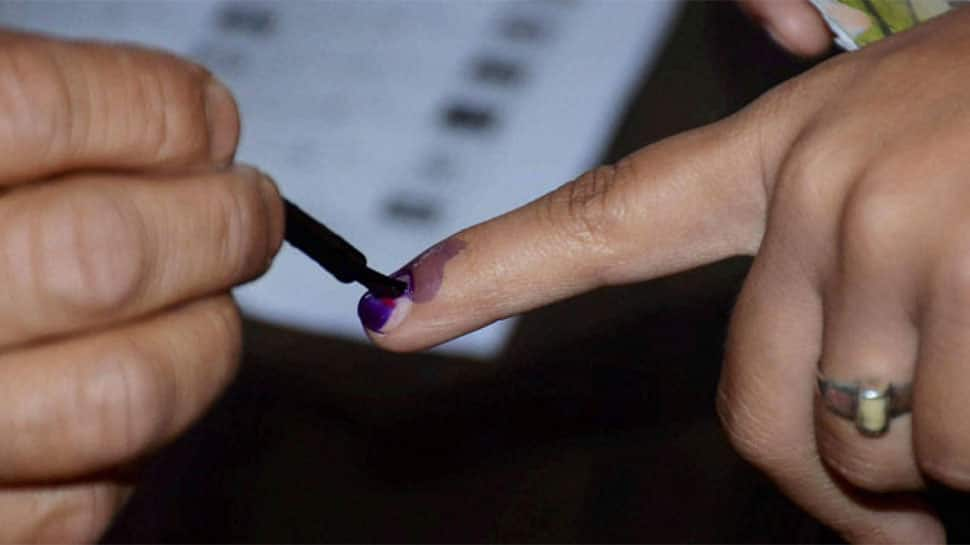 Madhya Pradesh electoral roll: Over 6.7 lakh ineligible voters found