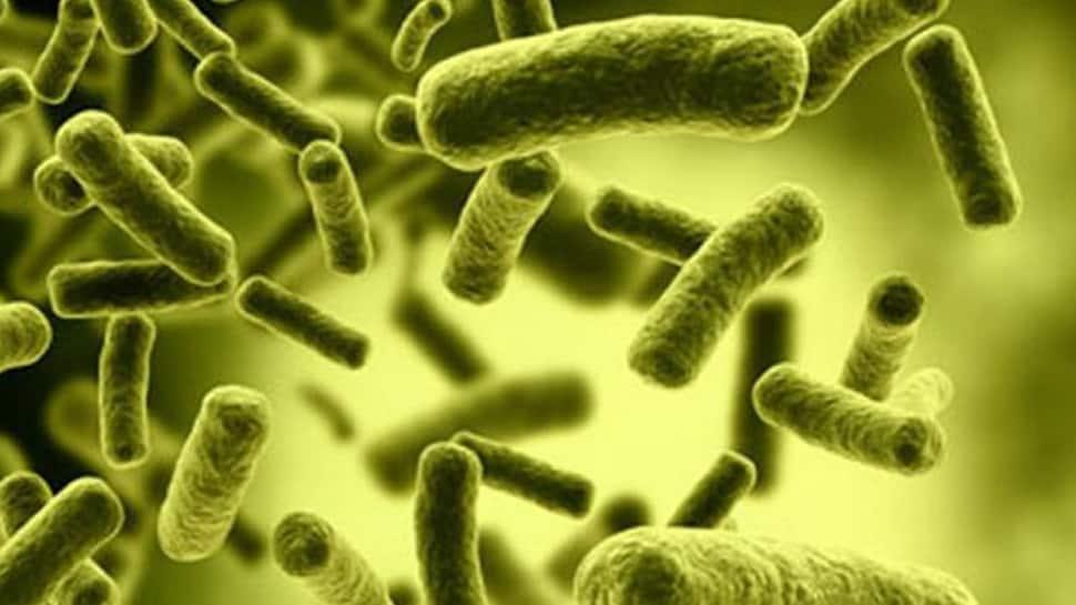 Flesh eating ulcers on rise in Australia