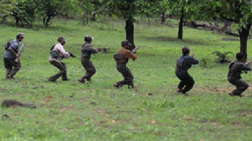 Seven Naxals gunned down in Chhattisgarh's Bijapur district