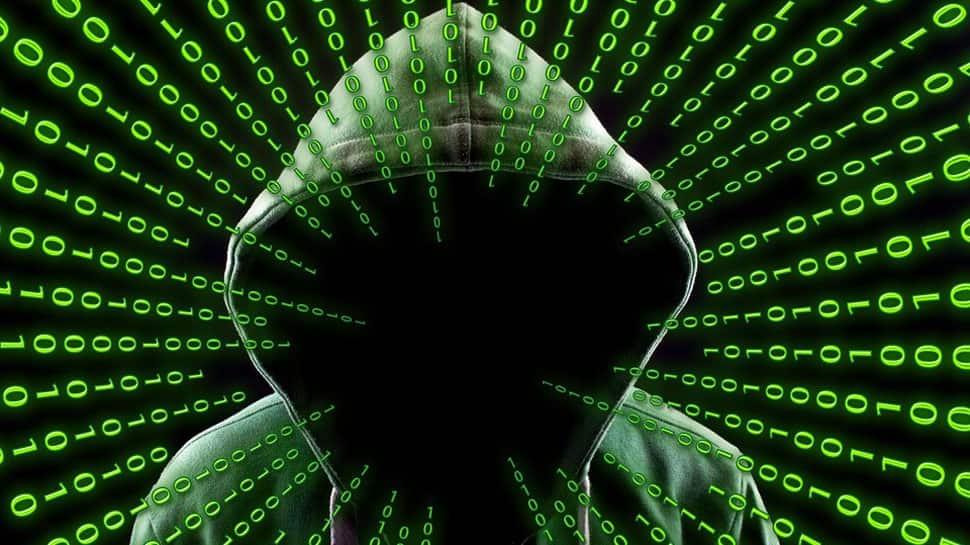 Two Kashmiri students arrested from Punjab for hacking 500 websites