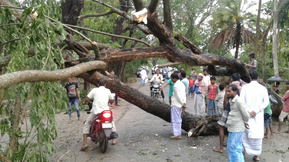 Death toll in Sunday storm mounts to 62, maximum casualties in Uttar Pradesh