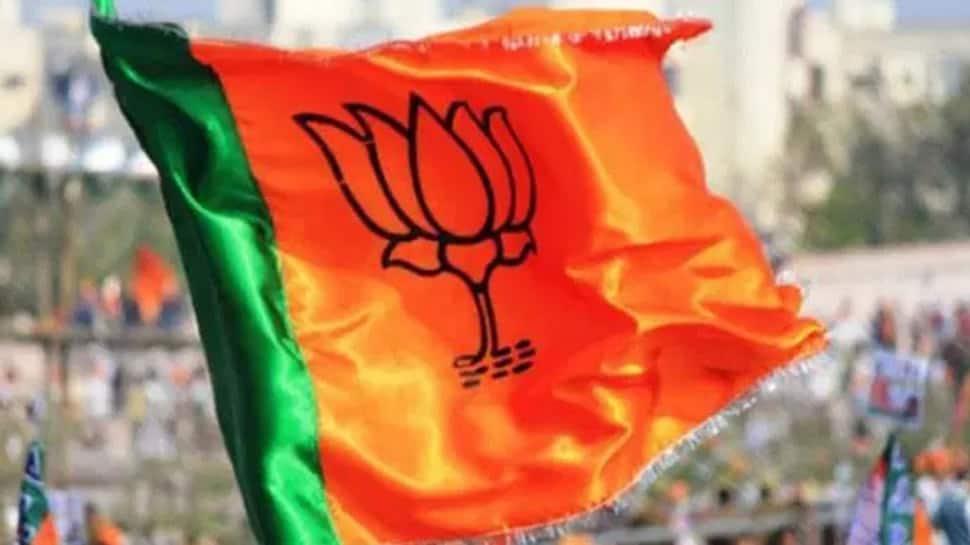Karnataka election results: We have crossed half-way mark, says BJP