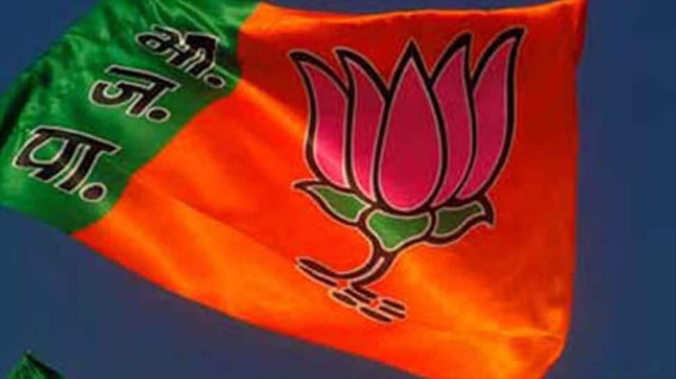 Karnataka poll results trailer of 2019 Lok Sabha polls: J&K Dy CM