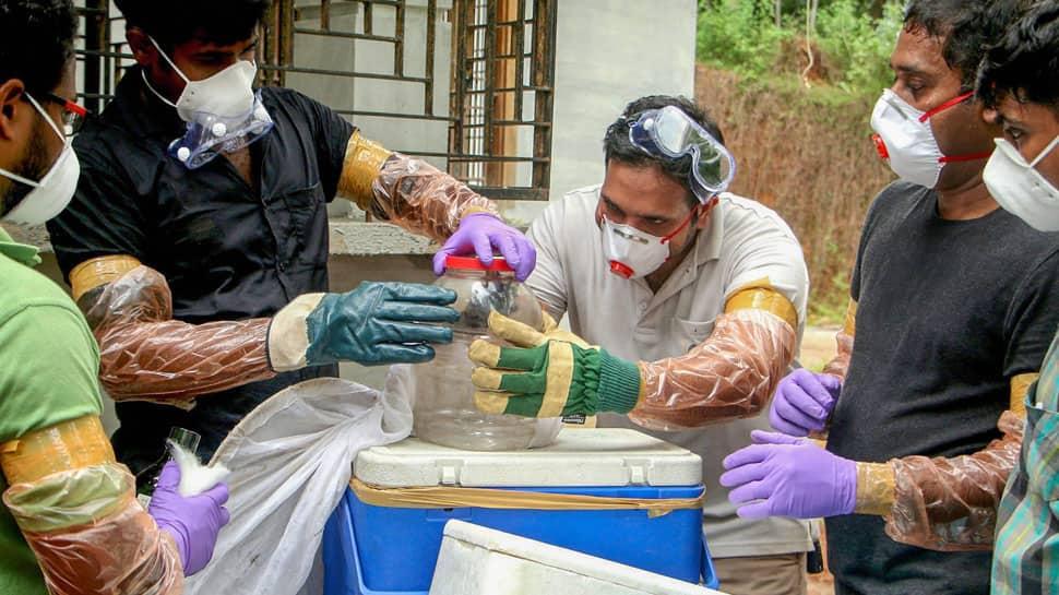 Authorities fear Nipah virus may spread to Goa and Mumbai; hospitals on alert