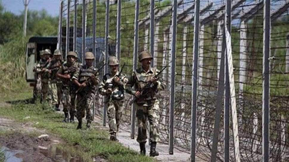 Days after 'full implementation' pact, Pakistan violates ceasefire again, kills 2 BSF jawans