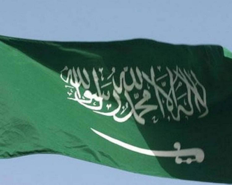 Saudi Arabia releases eight people held in activist crackdown