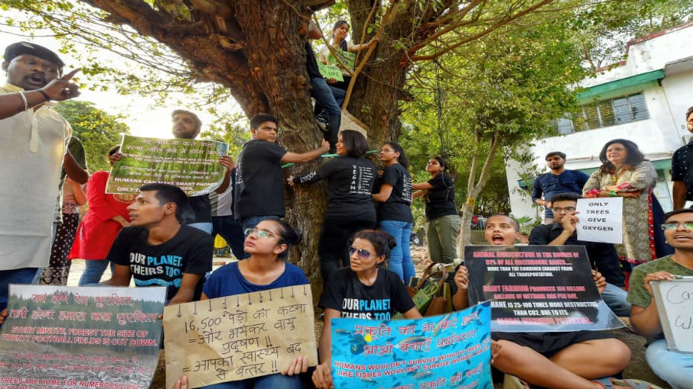 Locals protest cutting of 14,000 trees in Delhi, AAP and Centre pass the buck
