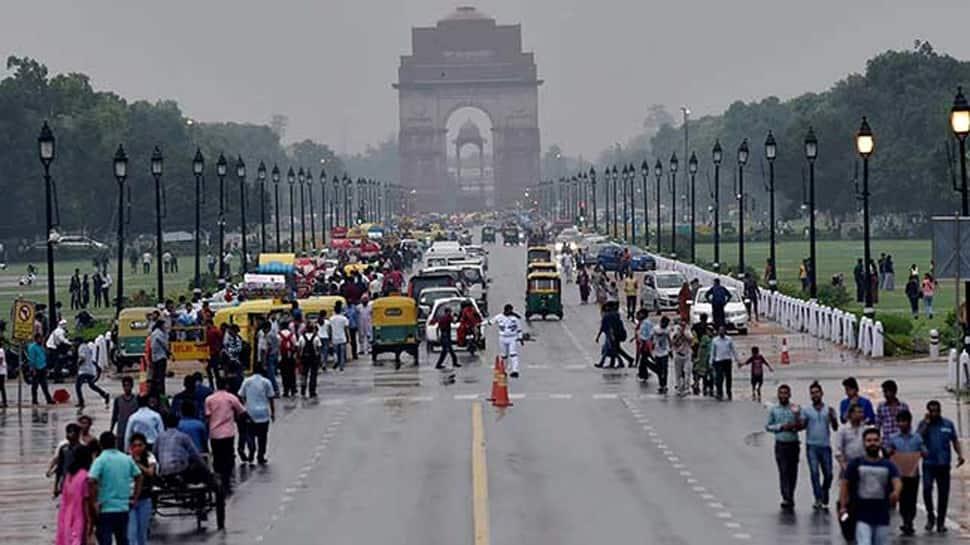 Don't cut trees in Delhi till July 19, orders NGT