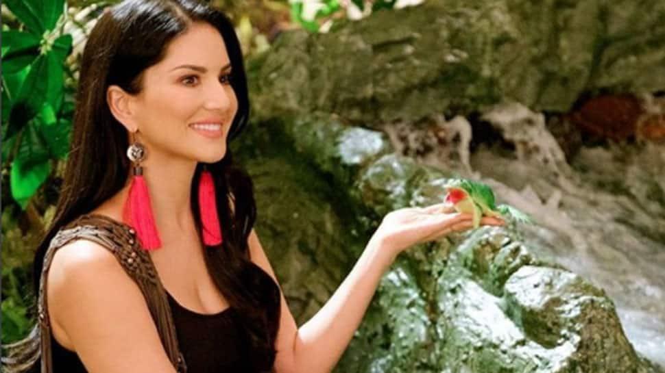 Sunny Leone's list of Bollywood films