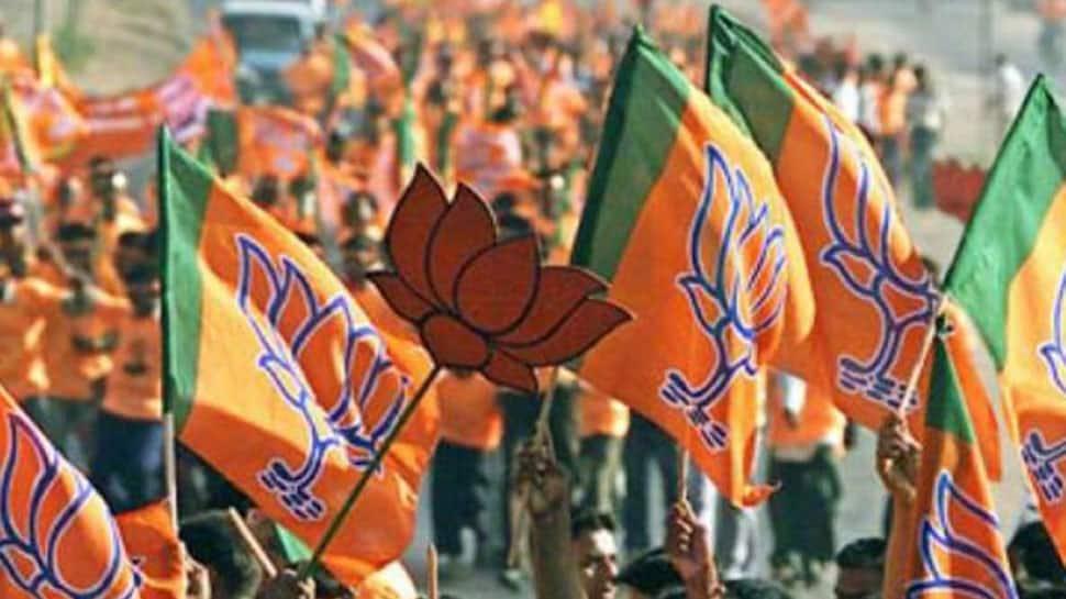 Biju Janata Dal in Odisha has a 'lollipop' government: BJP