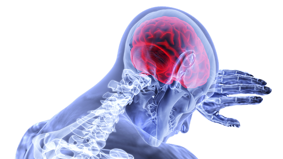 New brain network linked to pain in Parkinson's disease: Scientists