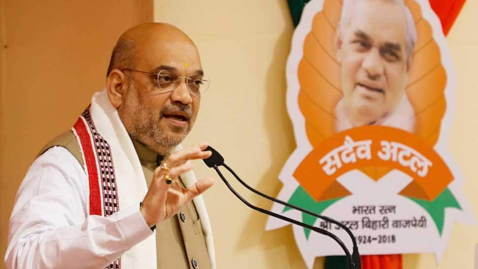 BJP to contest 2019 Lok Sabha elections under Amit Shah, defers organisational polls
