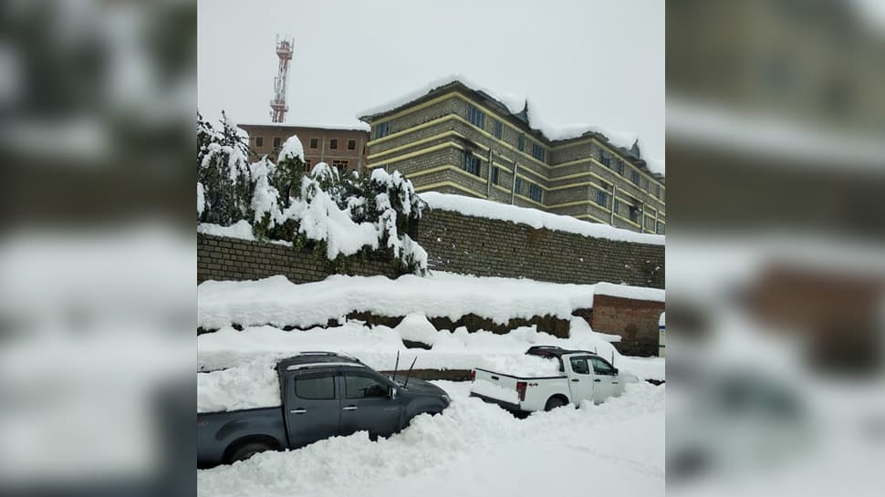 Two German nationals, stuck in blizzard in Lahaul-Spiti, rescued by IAF