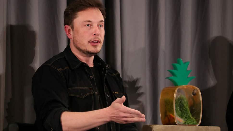 US regulator sues Elon Musk for fraud, seek to remove him from Tesla
