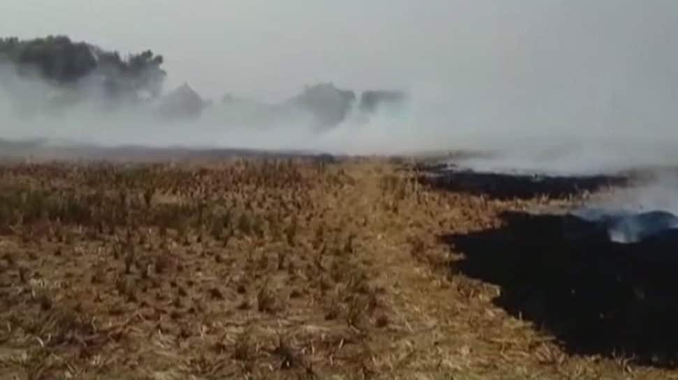 Punjab farmers burn stubble, claim fire-crackers contribute to pollution too