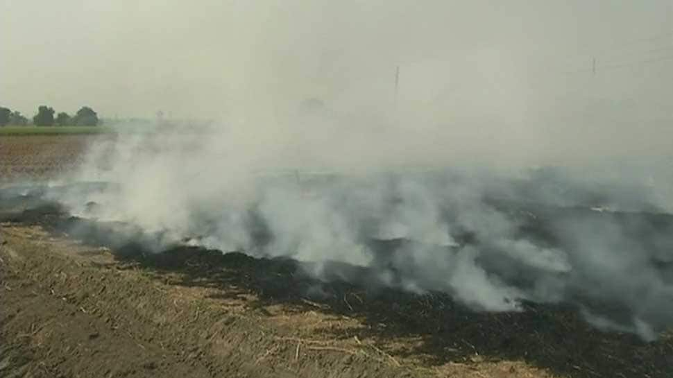 Haryana farmers reduce stubble-burning, claims government