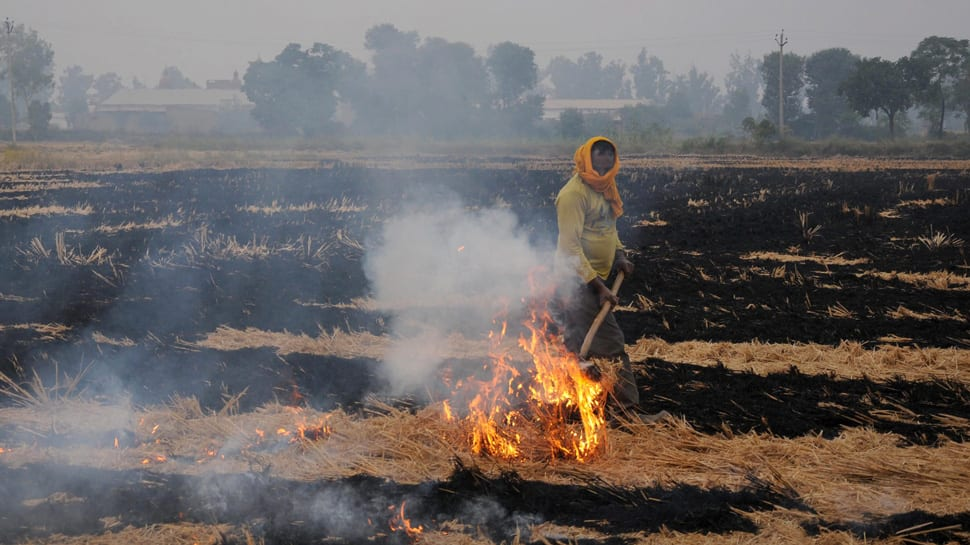 More stubble burning this year compared to last year: EPCA chairperson