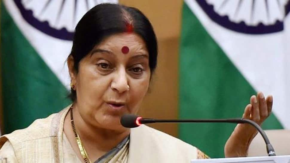 India's strength and success has been a force for global peace, stability: Sushma Swaraj