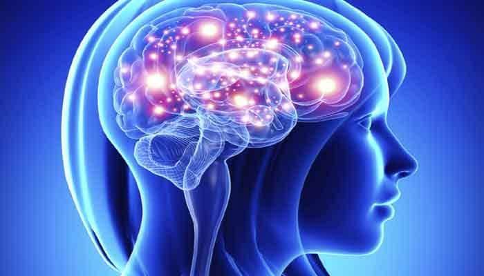 Here's how human brain recalls events