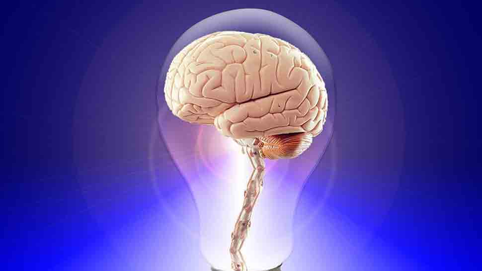 Men's brains diminish faster than women's: Study