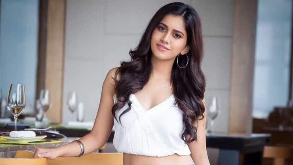 Nabha Natesh to play a Hyderabadi girl in iSmart Shankar