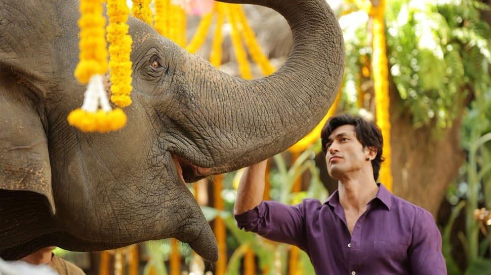 Vidyut Jammwal's 'Junglee' treat for kids