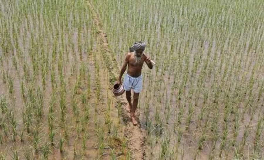 RBI notifies 2% interest subsidy scheme for short-term crop loans